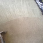Carpet-Cleaning-Evanston