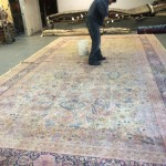 Commercial Carpet Cleaning Evanston