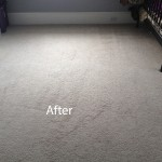 Cranberry Juice Stain Removal Evanston B