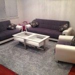 Evanston-Upholstery-Cleaning