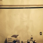 Evanston-mold-damage
