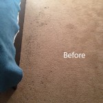 ink stain removal Evanston-A