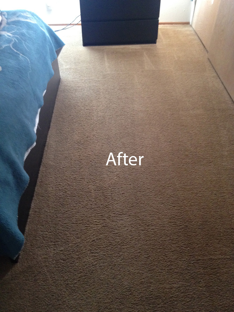 how to clean ink off a carpet